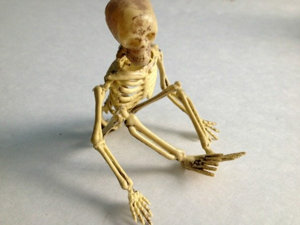 Make a Jailbird Skeleton Halloween Decoration