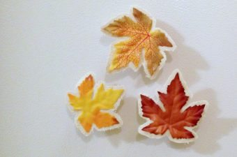 Fall Leaf Magnet Clips