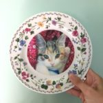 Harry Potter Professor Umbridge Inspired Cat Plates